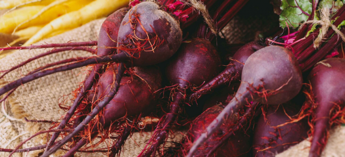 A bundle of vibrant beets that regulates digestion and improves gut health