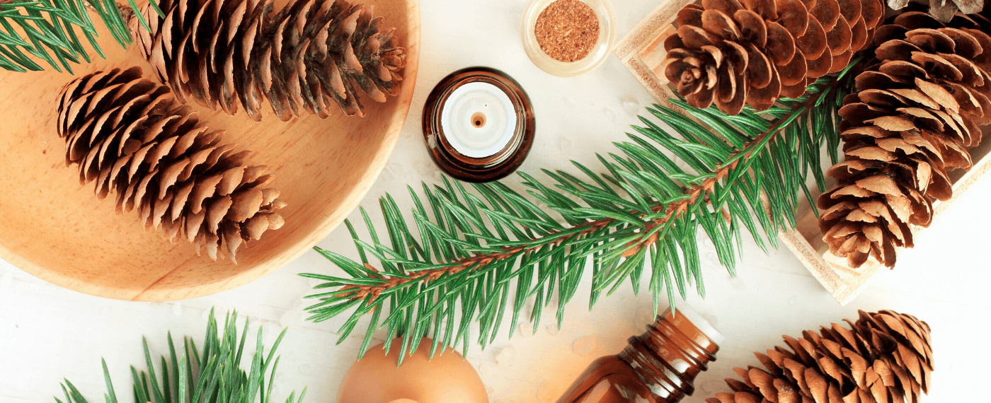 A festive collection of natural remedies for your gt health