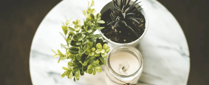 A candle next to two small plants on top of a end table